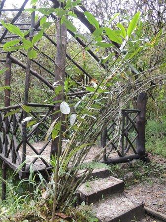 Los Jardines de Mandor: Begining of the trail