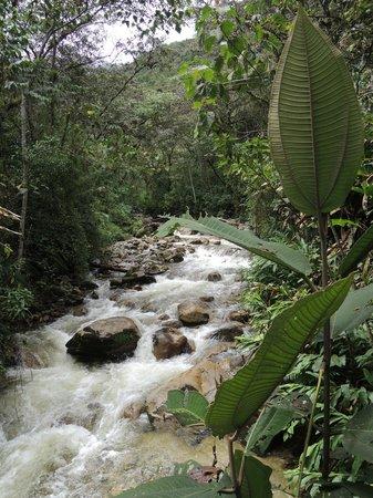Los Jardines de Mandor: River