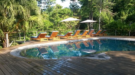 El Remanso Lodge : Attractive pool area