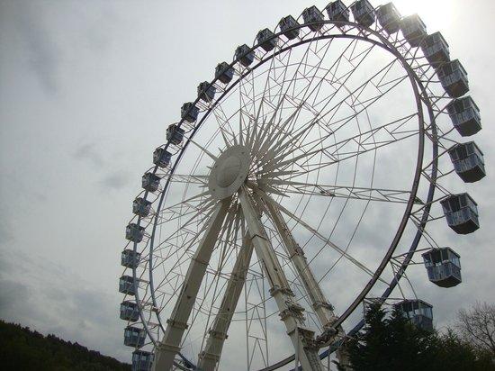 Nigloland : la roue