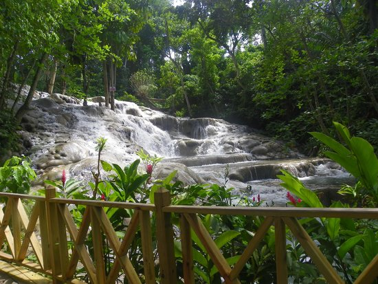 Dunn's River Falls and Park: Come on in !!