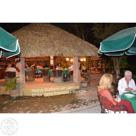 Hotel La Tierra Prometida : jardines y palapas