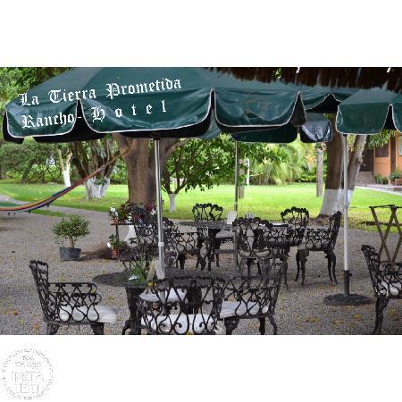 Hotel La Tierra Prometida : ricos desayunos y alimentos
