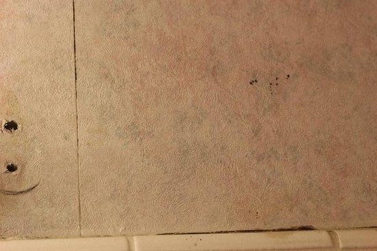 Mission Valley Resort: mildew. dirty walls