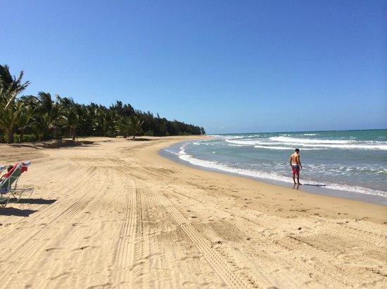 The St. Regis Bahia Beach Resort : Onsite beach