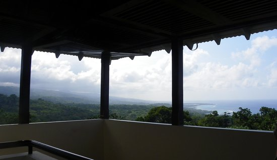 Rainforest Adventures Jamaica : Isn't it beautiful !