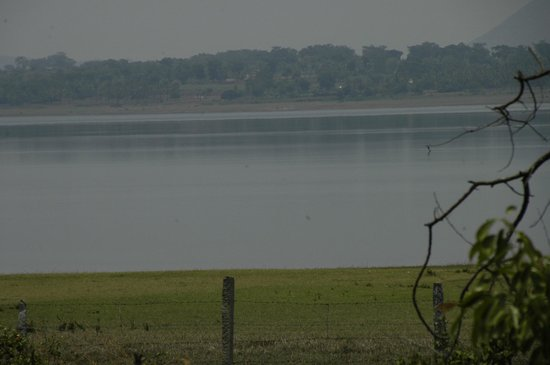 Red Earth, Kabini : view from our cottage.