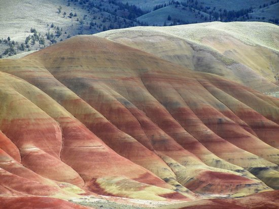 Wilson Ranches Retreat Bed & Breakfast: The Painted Hills