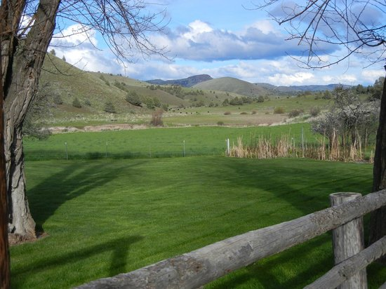 Wilson Ranches Retreat Bed & Breakfast: View from guest house
