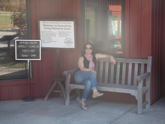 Fosterfields Living Historical Farm: Entrada da recepção com panfletos e museu para a fazenda