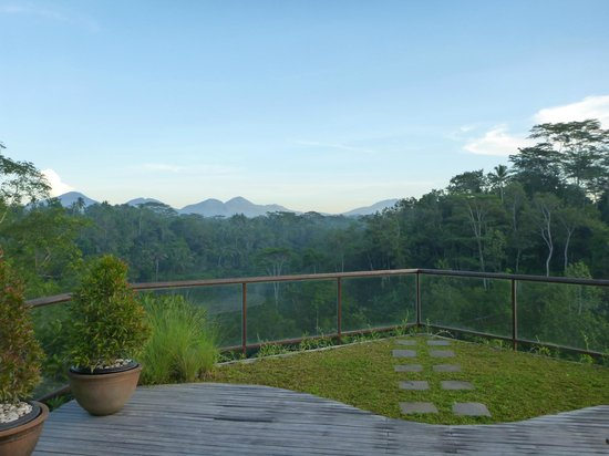 Komaneka at Tanggayuda: Bale Daja (2 bedroom villa) - view from upstairs relaxation deck