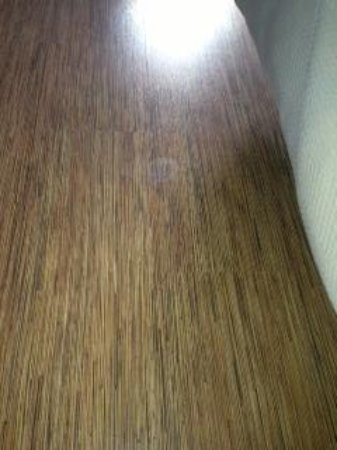 Motel 6 Overland: Used a wet towel to see if the floor was stained