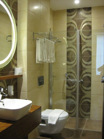 Grand Hotel Downtown: shower room