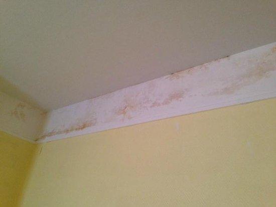 Bristol Hotel : infiltrations d'eau au dessus du bureau et du lit