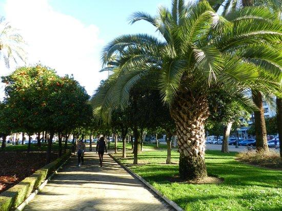 NH Cordoba Califa: Парк рядом с отелем