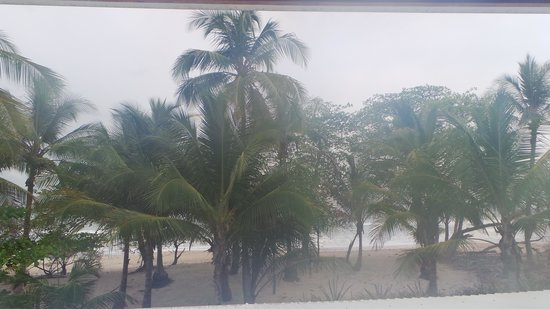 Hotel Tropico Latino: View from our room