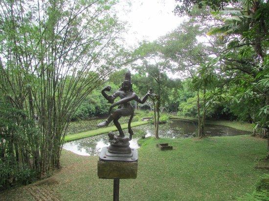 Bentota, Sri Lanka: Butterfly pond