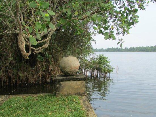 Bentota, Sri Lanka: Vista