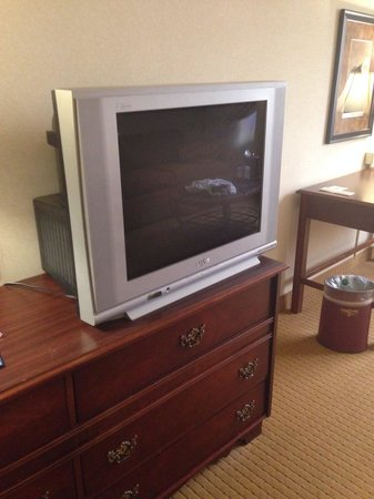 Wyndham Garden Amarillo: Flat screen...tube tv maybe.