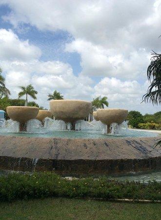 Now Larimar Punta Cana: Fountains