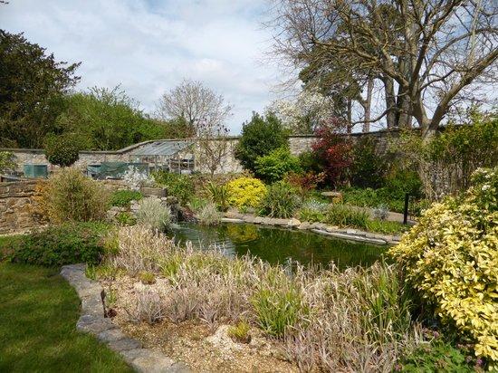 Liongate House: Pond area