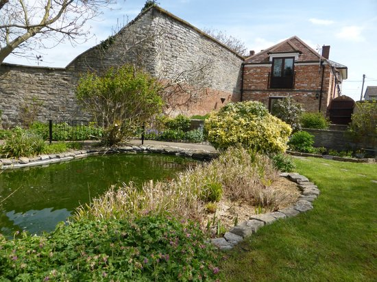 Liongate House: Pond view