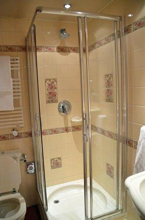 Carlton Ambassador Hotel : The shower