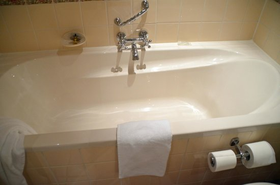 Carlton Ambassador Hotel : The tub