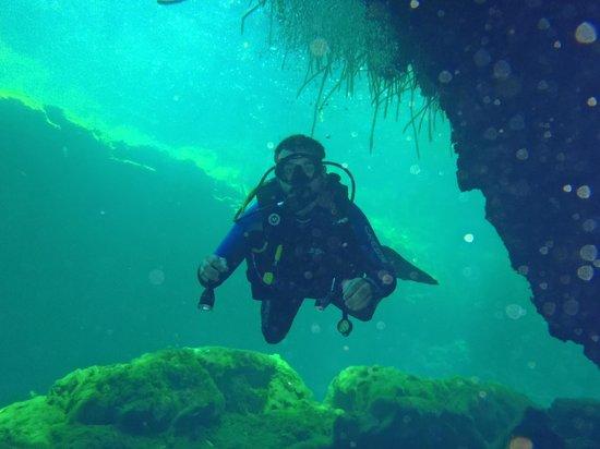 Planet Scuba Mexico: Under the Mangroves at Casa Cenote