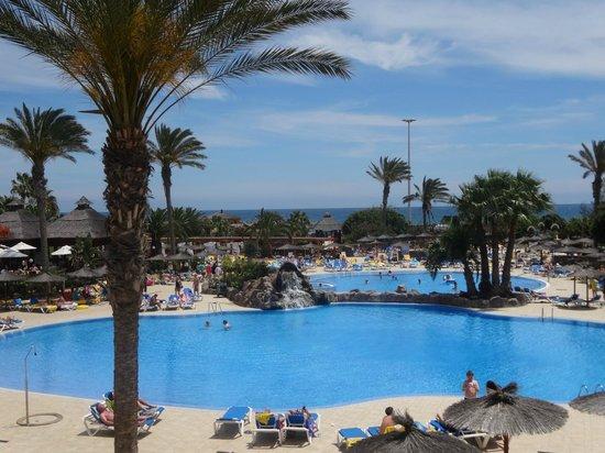Hotel Elba Carlota : Pool view