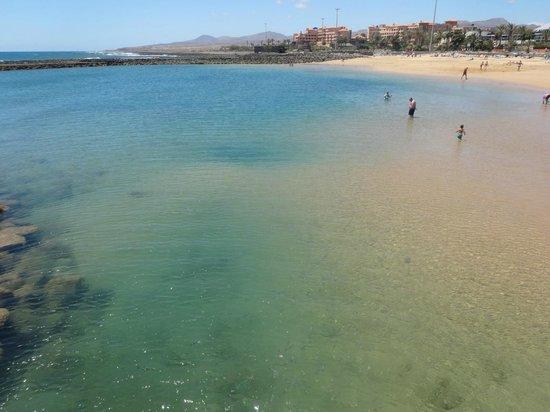 Hotel Elba Carlota : View of the beacg: