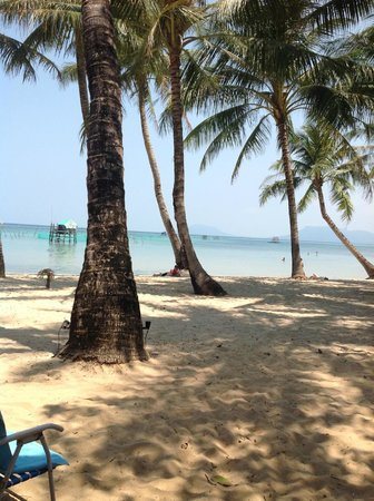 Peppercorn Beach Resort : View from our bungalow patio area
