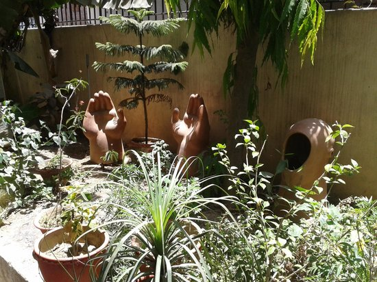 Ishan Paying Guest House: garden