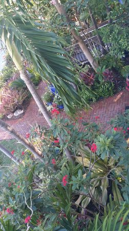 The Mermaid & The Alligator: Caribbean Queen - view from porch