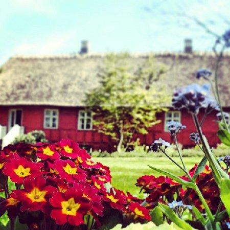 The Funen Village : Jardim