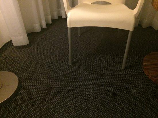 Spa Club Hotel: Ковер в номере и мебель