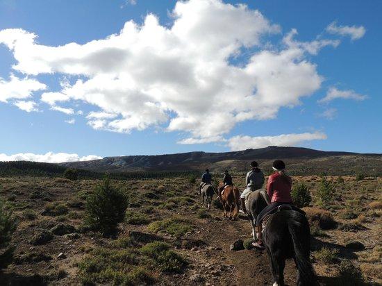Cabalgatas Haneck : incio do passeio pela estepe patagônica