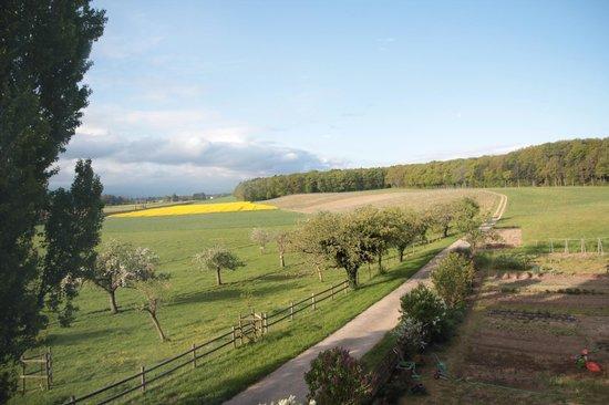 Domaine de Bois-Bougy : Sunny morning view.