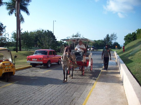 Breezes Bella Costa: Horse carriage ride to Varadero with Billy and Chocolate