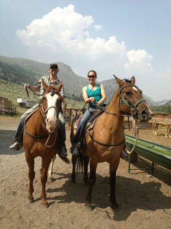 June Lake Villager : Nearby horseback riding!