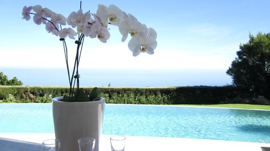 Atlantique Villa Camps Bay: Orchidae at the infinity pool