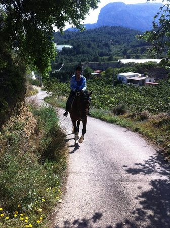 Rancho La Ofra: out on a hack