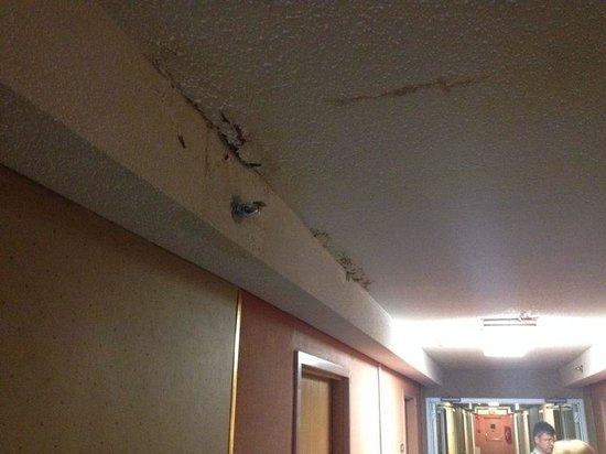 Trip Hotel Ithaca : Hallway
