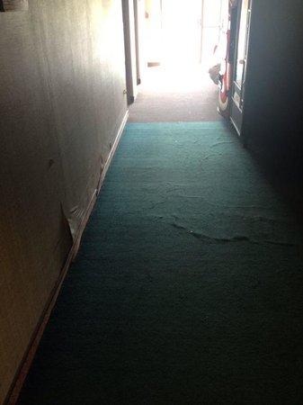 Trip Hotel Ithaca: Hallway