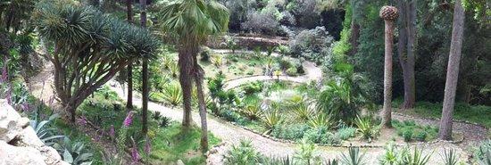 Parque de Monserrate: panorama part of the garden