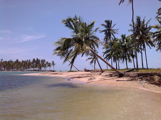 Sao Miguel dos Milagres Beach: Paraíso!!!