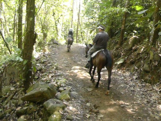 Cascadas Farallas Waterfall Villas: Horseback tour Nauyaca Falls