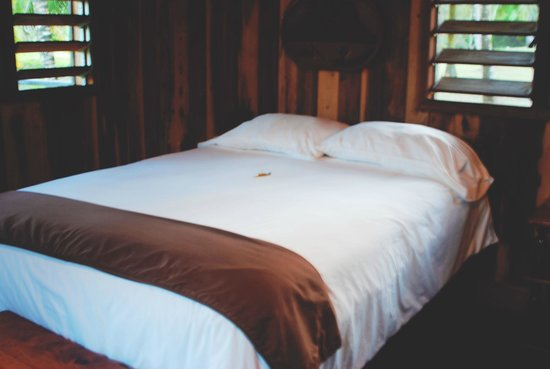 Windy Hill Resort: Room 15 Queen Bed