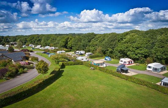 Monkton Wyld Caravan and Camping Park: Right Hand Side of our Site