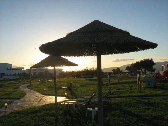 Geraniotis Beach Hotel: Zielony teren z parasolami,leżakami ,boiskiem.